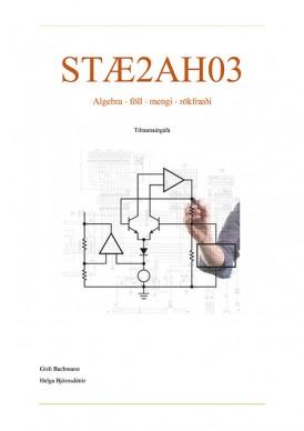 STÆ2AH03-fors